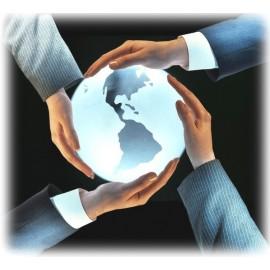 Customize development service fee